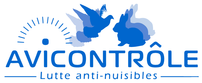 Avi Controle