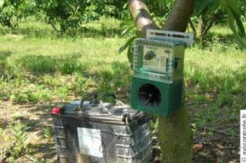 Émetteur de cris d'oiseaux AVILEC S4