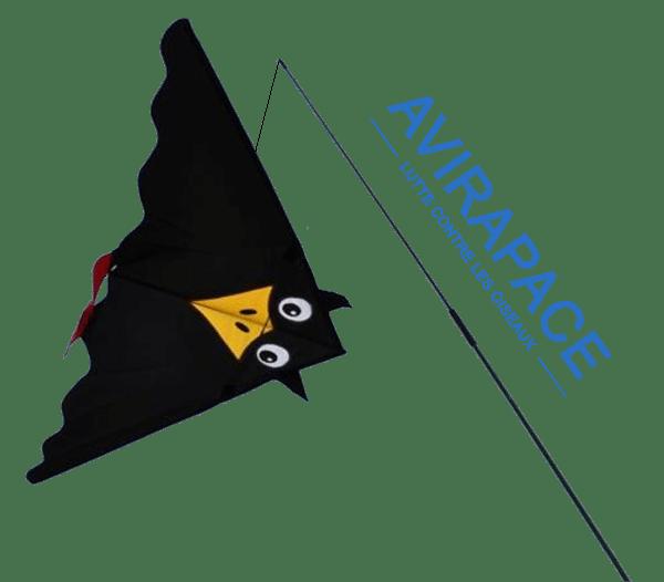 Avirapace